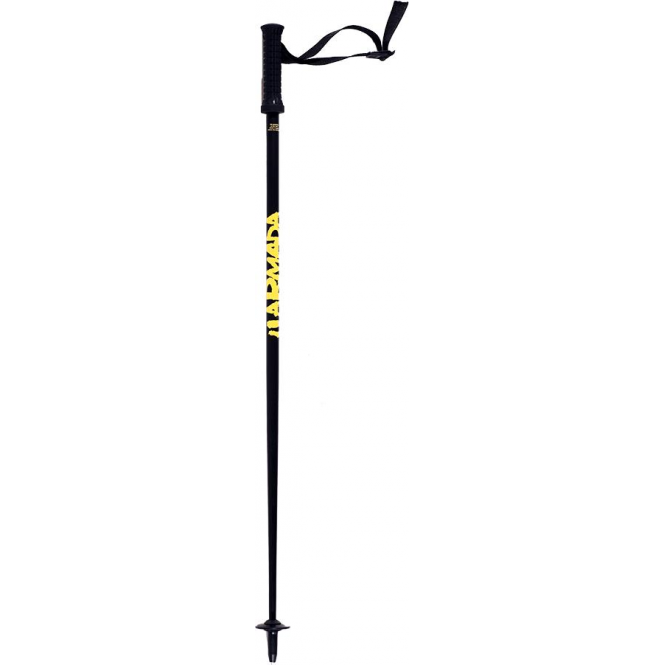Armada Motive Recreational Ski Pole- Black